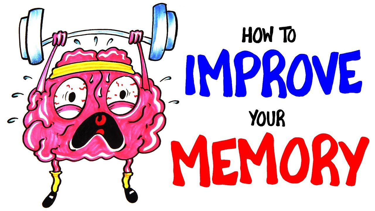Photo of Strengthen Your Memory by Following These Diet, Workout & Social  Habits